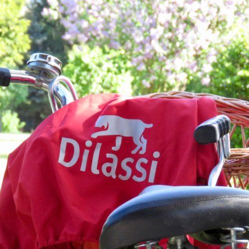 Detox your life // Ein Leben ohne Auto // Als Familie nachhaltig unterwegs sein bei jedem Wetter mit dem WichtelWarm von Dilassi